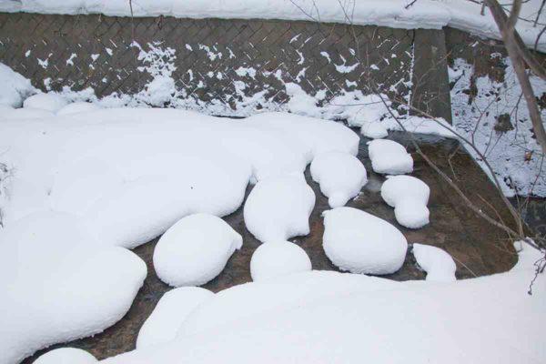 ポコポコ丸くてめんこい雪