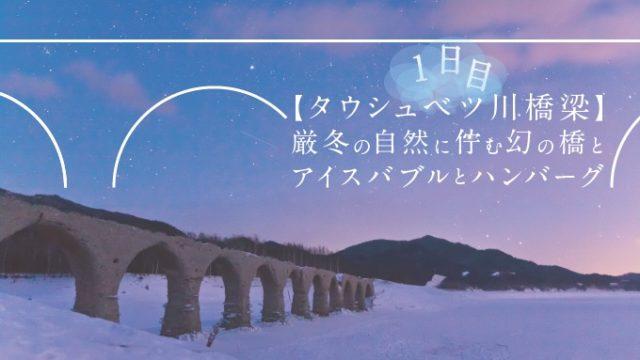 【タウシュベツ川橋梁】厳冬の自然に佇む幻の橋とアイスバブルとハンバーグ旅-1日目