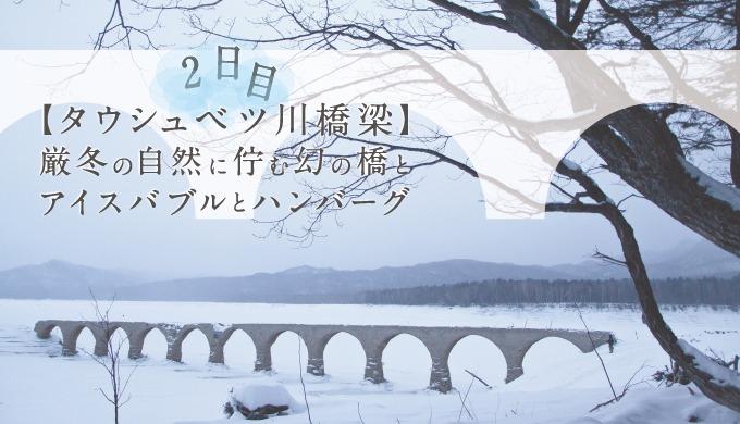 【タウシュベツ川橋梁】厳冬の自然に佇む幻の橋とアイスバブルとハンバーグ旅-2日目